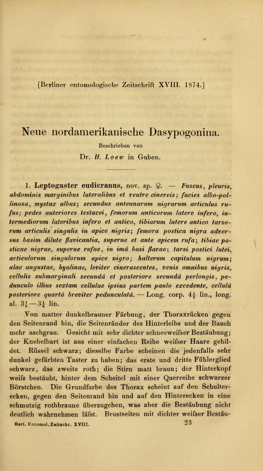 Neue nordamerikanische Dasypogonina