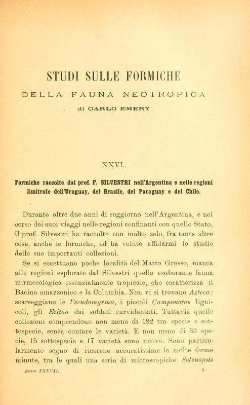 Studi sulle formiche della fauna neotropica
